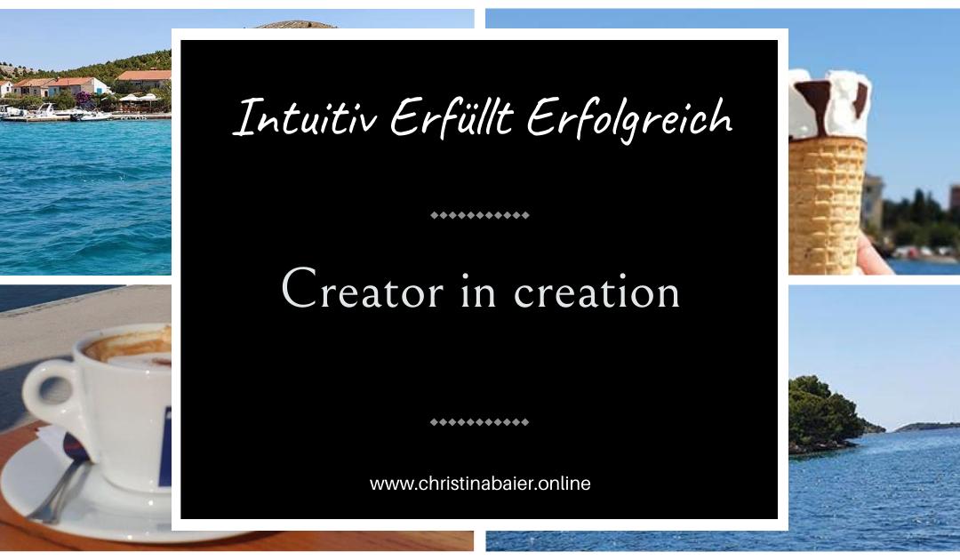 Creator in creation