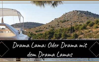 Drama Lama oder Drama mit den Drama Lamas